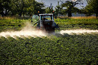 Des restrictions seront mises en place pour les agriculteurs à partir de l'an prochain.