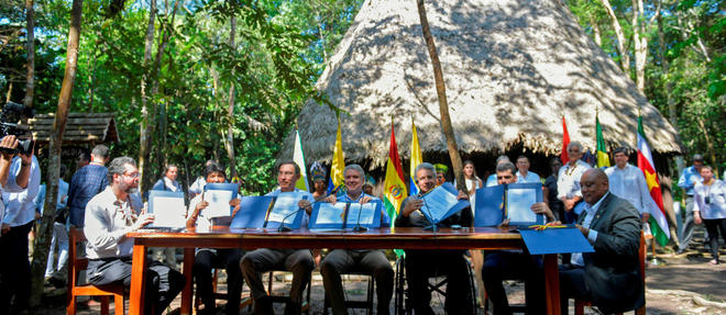 Sept des pays se partageant l'Amazonie ont signe un pacte vendredi pour proteger la foret tropicale.