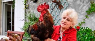 La propriétaire de Maurice, Corinne Fesseau, a poussé le cocorico de la victoire!