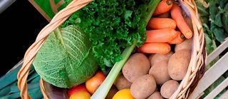 La DGCCRF a retiré de la vente en 2019 plusieurs produits bio.