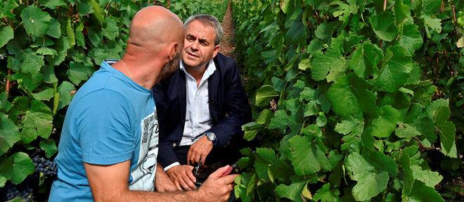 Le président duconseil régional desHauts-de-France en visite chez Sébastien Simon, viticulteur, producteur de champagne àNesles-la-Montagne, dans l'Aisne, le13septembre.  ©Elodie Gregoire