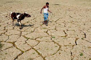 Un fermier indien en 2018.