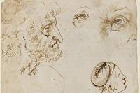 Dessins de Léonard de Vinci (1452-1519), datant probablement de 1470-1480. Plume et encre brune sur craie blanche.
