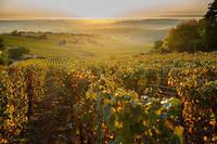 Le samedi 19 octobre prochain aura lieu la première édition d'un tout nouveau concours. Ce dernier propose des dégustations et identifications de vins à l'aveugle!