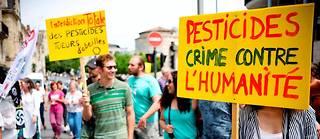 Agit-prop.  ABordeaux, le19mai, des manifestants défilent lors d'une «marche contre Monsanto et pour l'agroécologie», àl'appel d'associations, dont Greenpeace.  ©SEBASTIEN ORTOLA/REA