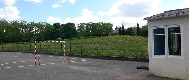 La cour de l'école de Villeneuve, le 13 mai 2014, entourée de vignes. Depuis, les agriculteurs font plus attention et préviennent les riverains de leurs opérations d'épandage.