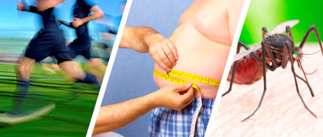 Santé- Obésité: la haute autorité fait le ménage