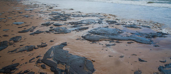 Plus de 2 000 kilomètres de côte ont été touchés au Brésil.
