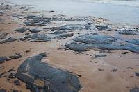 <p>Plus de 2 000 kilomètres de côte ont été touchés au Brésil.</p>
