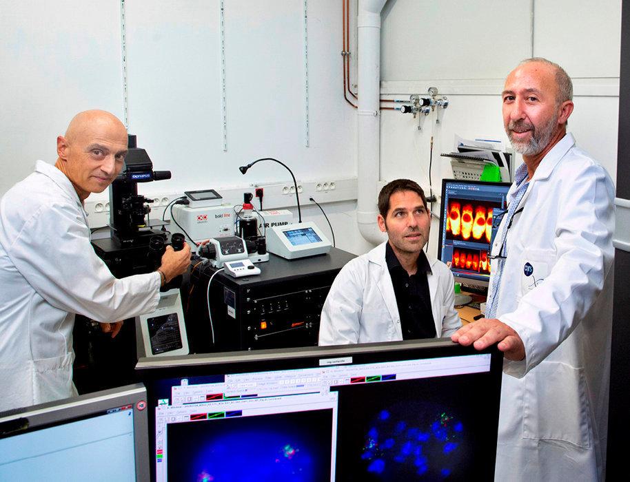 Nouvelle piste. Monsef Benkirane (à dr.), directeur de l'IGH, ici avec les chercheurs Giacomo Cavalli (à g.) et Marcelo Nollmann. L'équipe de l'éminent professeur a identifié un marqueur qui permet de différencier les cellules dormantes infectées des cellules saines. Une fois ces cellules réservoirs identifiées, on peut les isoler afin de les analyser.