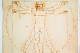 Les proportions humaines, d'apres Vitruve. Dessin de Léonard de Vinci. 344 x 245 mm. Galerie dell'Accademia, Venise.