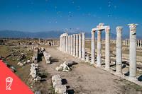 La politique des Séleucides avait essentiellement deux objectifs : affermir le pouvoir des troupes, des élites et des colons greco-macédoniens sur les immenses territoires allant de la Turquie actuelle à l'Afghanistan en passant par la Syrie, l'Irak et l'Iran, et s'assurer de l'appui des populations locales.