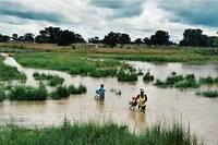La principale ville, les cultures et les routes sont inondées par les pluies qui déferlent sur la région de Pô.