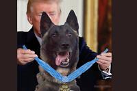 Le photomontage publié par Donald Trump sur les réseaux sociaux.
