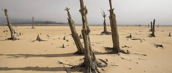 Après trois années de pénurie en eau, la situation a atteint à l'été austral2017-2018 (l'hiver dernier dans l'hémisphère Nord) un niveau critique dans la ville du Cap (Afrique du Sud).
