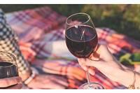 <p>Le dimanche 17 novembre, de 10 heures à 18 heures, les viticulteurs de Pomerol ouvrent leurs portes.</p>
