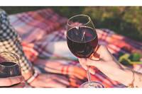 Le dimanche 17 novembre, de 10 heures à 18 heures, les viticulteurs de Pomerol ouvrent leurs portes.