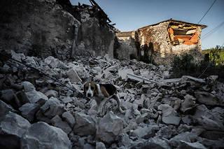 Un séisme de magnitude 5,4 sur l'échelle de Richter, qui n'a duré que quelques secondes lundi en milieu de journée, a provoqué de nombreux dégâts au Teil, ville de 8 500 habitants proche de Montélimar (Drôme).