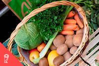 Un panier de légumes biologiques.