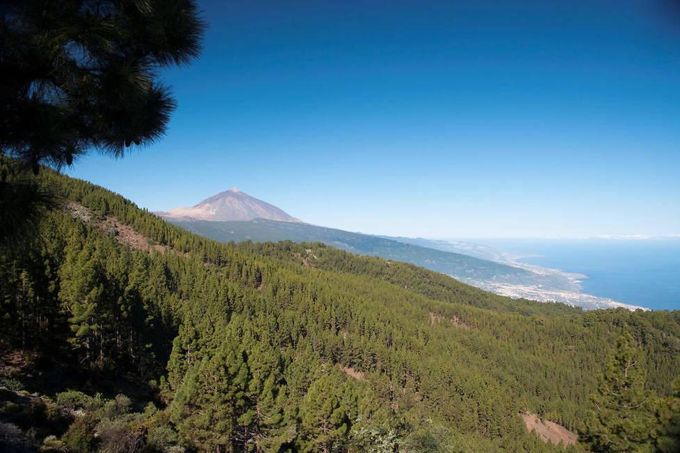 <p>Le contraste entre la mer et la montagne est saisissant du haut du Parc National Cañadas del Teide à Tenerife.</p>