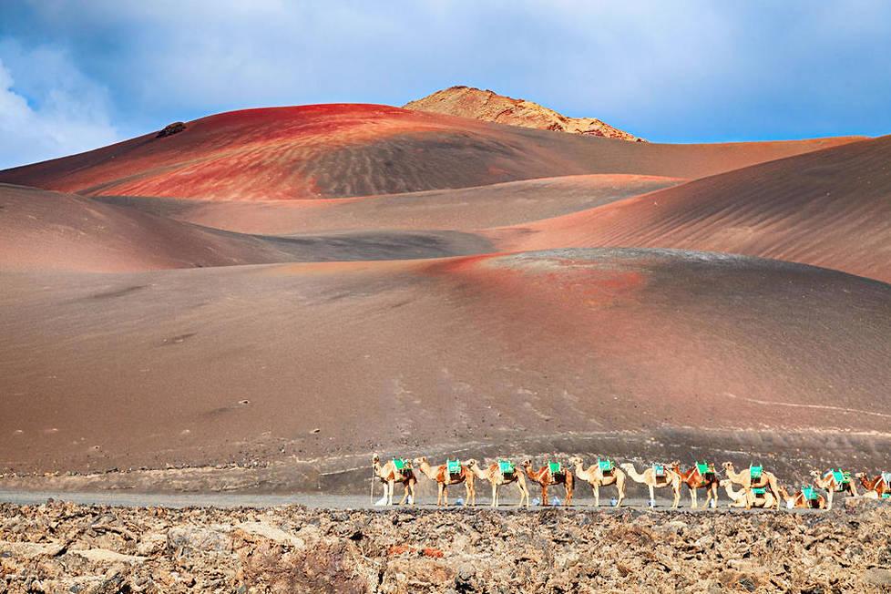 <p>A l'image de la plage Famara, des kilomètres de sable blanc et de délicieuses plages entourent Lanzarote.</p>