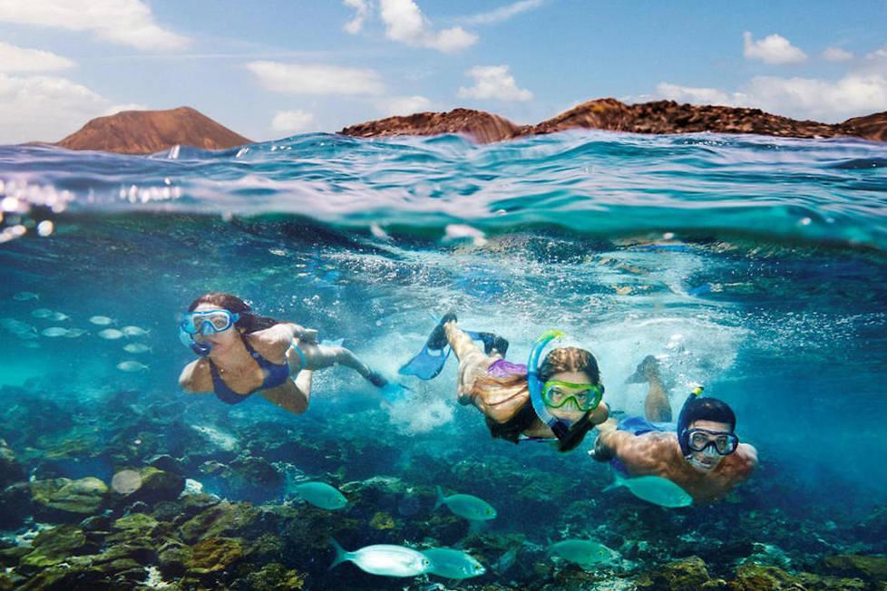 <p>La beauté des Canaries se trouve aussi sous l'eau. Explorer les fonds marins de Fuerteventura sont ainsi une véritable aventure en soit.</p>