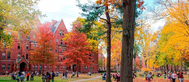 Le campus historique de Harvard se dresse depuis 1636àCambridge, près de Boston, dans leMassachusetts.  ©Jannis Werner (Harvard Images) / Alamy Stock Photo