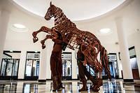 Présentation du spectacle War Horse.