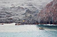 Au total, 47 touristes et guides, venus d'Australie, des Etats-Unis, du Royaume-Uni, de Chine, d'Allemagne, de Malaisie et de Nouvelle-Zélande, se trouvaient sur l'île au moment de l'éruption.