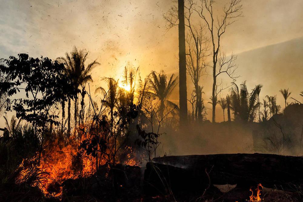 Coup de chaud sur l'Amazonie
