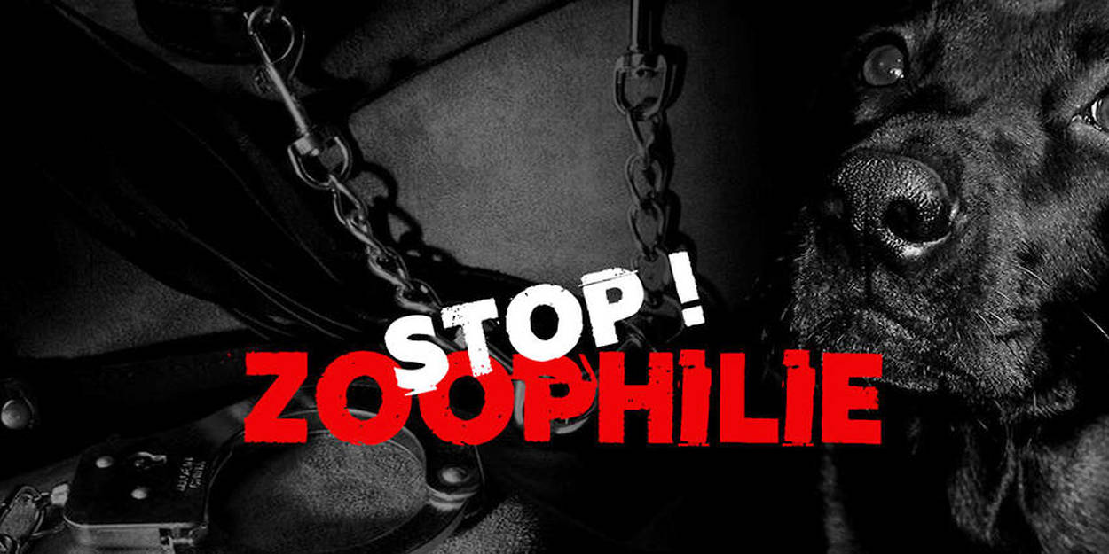 Zoophilie forum