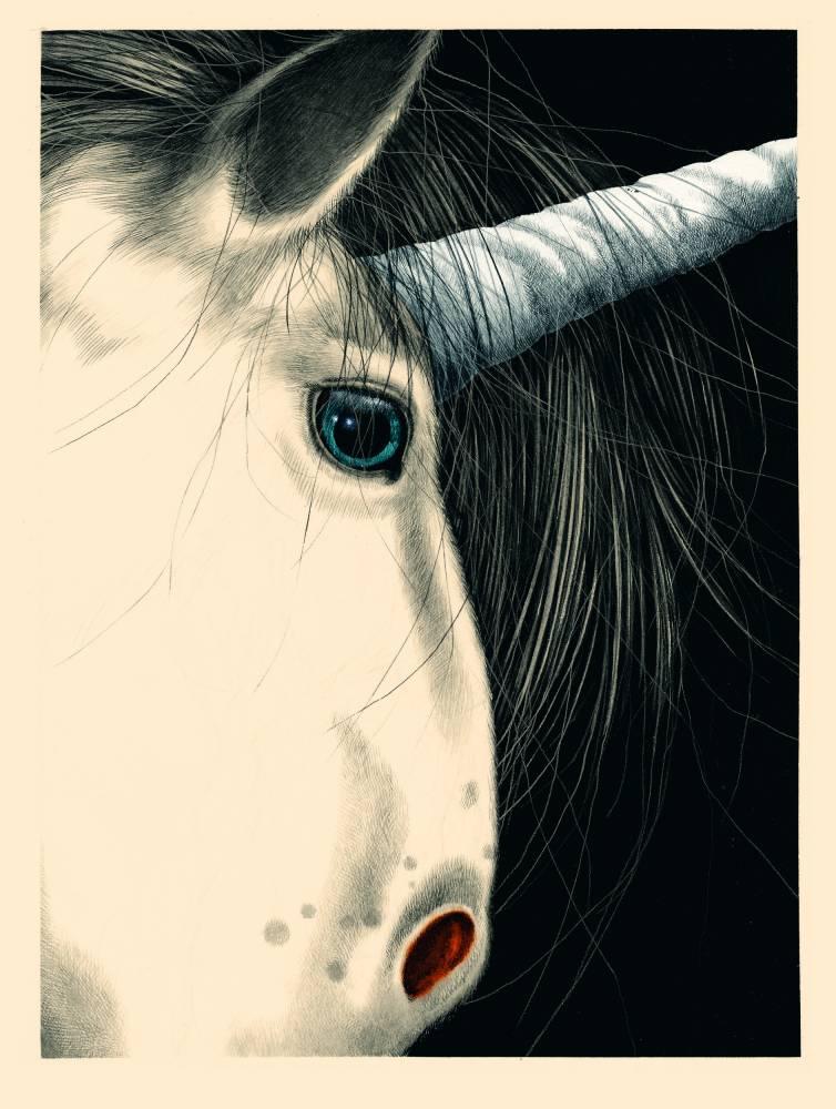 Licorne ©  Grasset