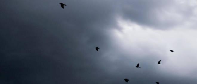 La météo de ce lundi 24 février - Le PointLe Point