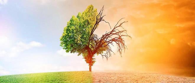 Des temperatures invivables dans certaines zones du globe d'ici 50 ans ? (illustration)