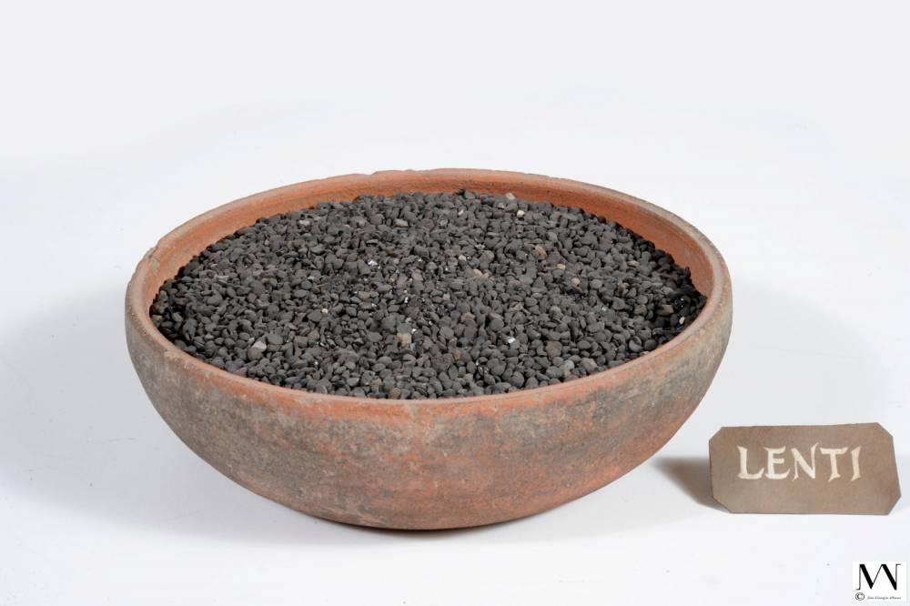 lentilles ©  GIORGIO ALBANO/Musée archéologique national de Naples