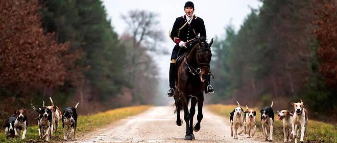 Plus de 80 % des Francais sont contre la chasse a courre, mais les veneurs defendent leur pratique (photo d'illustration).