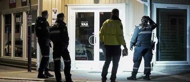 Norvege: 5 tues dans une attaque a l'arc, la piste terroriste pas exclue