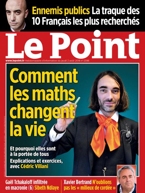Comment les maths changent la vie. Interview de Cédric Villani, lauréat français de la médaille Fields