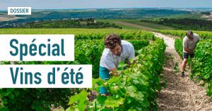 Le guide des vins de l'été<